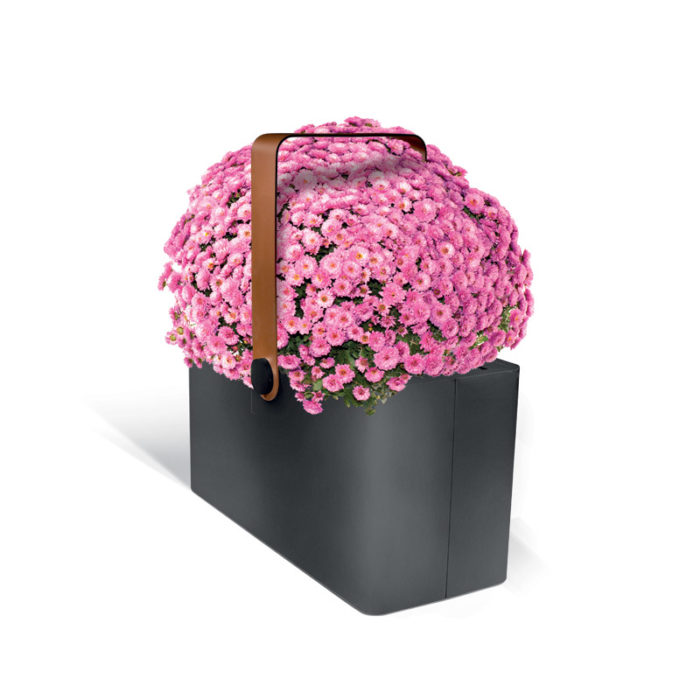 Planter-basket FIORIERA LAB23